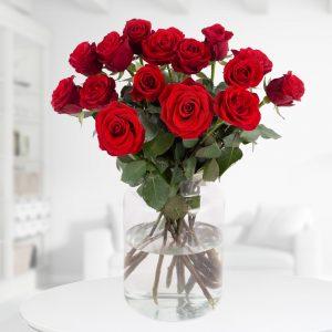 15 Rote Rosen (50cm)