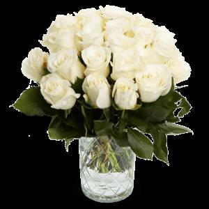 20 - 50 weiße Rosen
