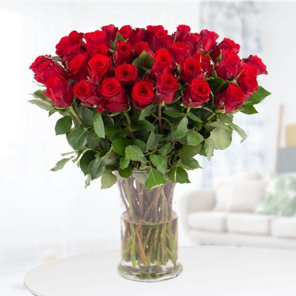 40 Rote Rosen (40cm)